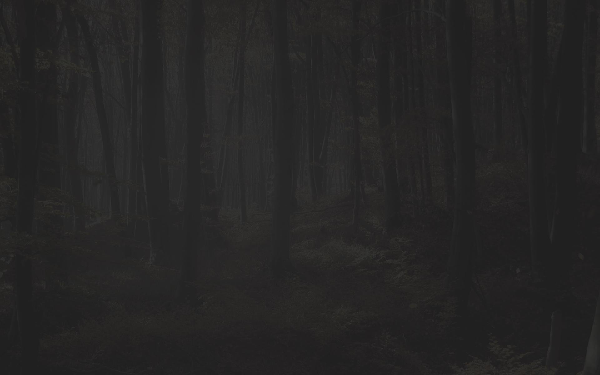GRUNIG /& ELMIGER Noir 2 /& 3 Cheek piece-DROITE//GAUCHE-Smallbore